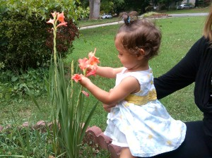 2015-07-19 bella and flower gladiolis