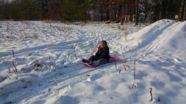 snow-grace-sled